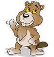 Brown Beaver vector image