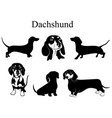 dachshund set collection pedigree dogs black vector image vector image