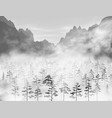 hight detailed realistic pine and fir vector image vector image