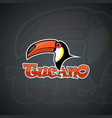 toucan set template graphics vector image