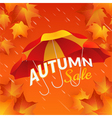 Autumn sale banner with umbrellas and maple leaves vector image vector image