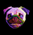 cute pug on geometric pop art style abstract vector image vector image