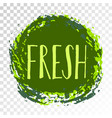 fresh label painted round emblem icon vector image