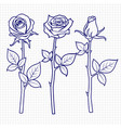 Hand drawn sketch roses flowers