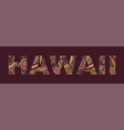 inscription hawaii in style abstract hand vector image