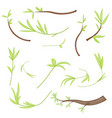 Set of stylized branches with leaves isolated on