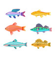 zebra and jewel cichlid set vector image