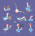 cartoon seagulls with different poses and emotions vector image vector image
