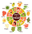 human viruses infographic set vector image vector image