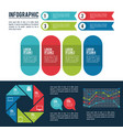 infographic styles and organization vector image vector image
