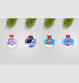 set of christmas tree branches with xmas and new vector image vector image