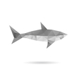 Shark isolated on a white backgrounds vector image
