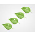 Abstract 3d leaf infographic Nature concept vector image vector image