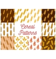 Cereal wheat and rye ears patterns vector image