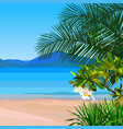drawn beach background with turquoise water and vector image