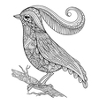 Hand drawn beautiful delicate bird sitting on vector image