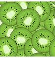 kiwi pattern vector image