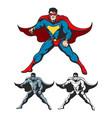 cartoon superhero set vector image