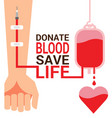 bag blood with hand for world blood donor day vector image