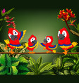 beautiful parrots perch on the trunk together vector image vector image