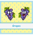 Grapes funny characters on yellow background vector image vector image