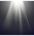 Light Effect Spotlight vector image