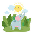 little elephant sun grass leaves nature wild vector image vector image