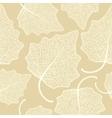 poplar leaf skeleton pattern vector image
