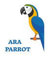 Tropical Bird Ara Parrot vector image