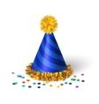 Blue birthday hat with spirals vector image