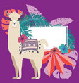 llama with exotic leaves and flowers vector image vector image