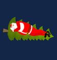 santa claus sleep on christmas tree sleeping vector image vector image