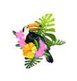 Tropical bird composition