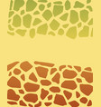 turtle texture vector image vector image
