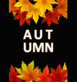 autumn background template with falling bunch of vector image vector image