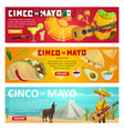 cinco de mayo greeting banner of mexican holiday vector image