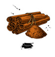 cinnamon stick tied bunch and powder vector image vector image