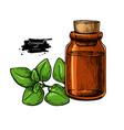 oregano essential oil bottle and oregano leaves vector image vector image