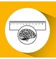 plastic ruler brain school knowledge vector image vector image