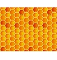 seamless pattern of honeycomb vector image vector image