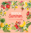 Tropical design with exotic fruits summer vector image