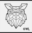 abstract polygonal geometric head a owl vector image vector image