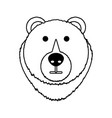 bear cartoon face vector image vector image