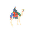 egyptian camel decorated with bright carpets and vector image vector image