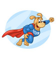 flying muscular dog in super hero suit vector image vector image