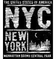 newyork city typography slogan t-shirt graphics vector image vector image
