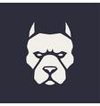 pitbull mascot icon vector image vector image