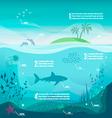 Underwater infographics vector image vector image