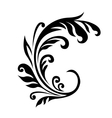 Floral embellishment vector image