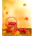 Autumn background with fresh fruit in basket vector image vector image
